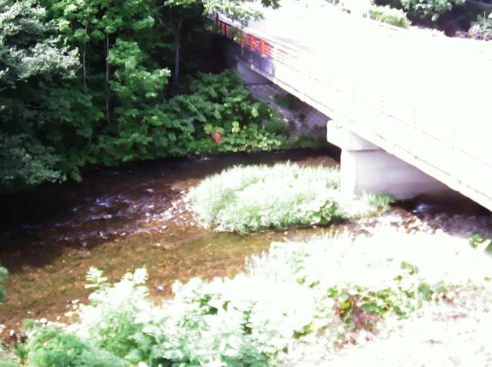 堀株川紅葉橋ライブカメラ(北海道共和町小沢)