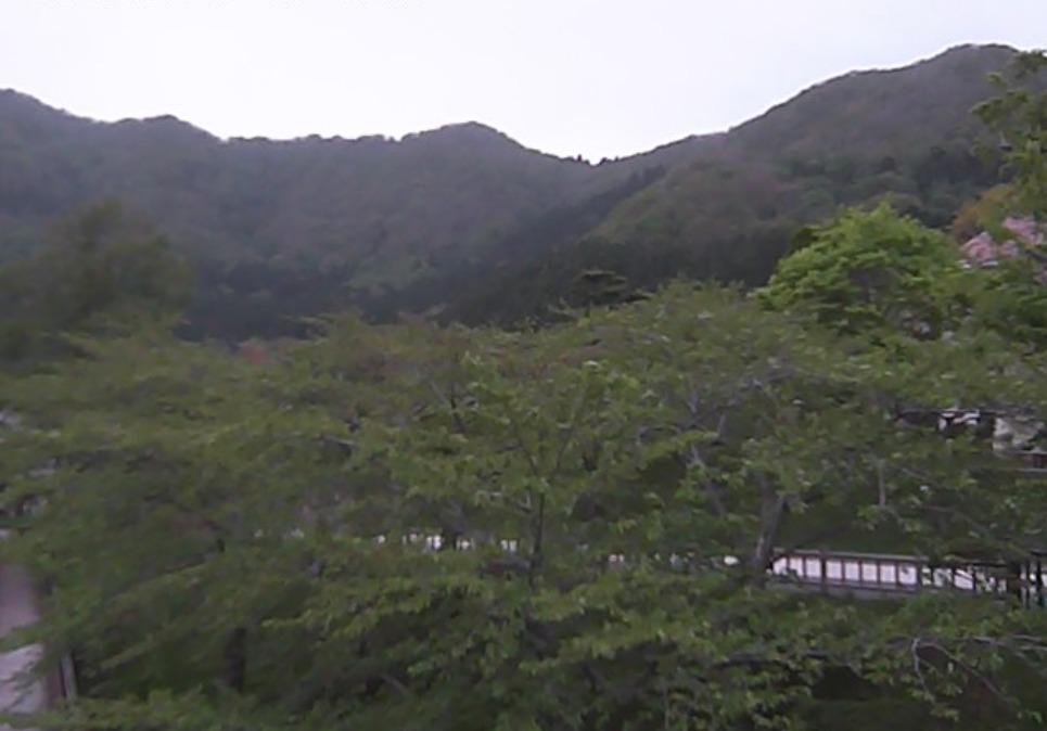 函館公園ライブカメラ(北海道函館市青柳町)