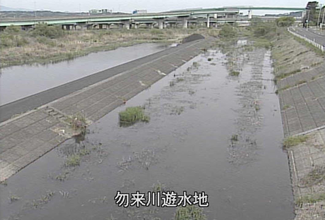 勿来川勿来川遊水地ライブカメラ(宮城県多賀城市市川)