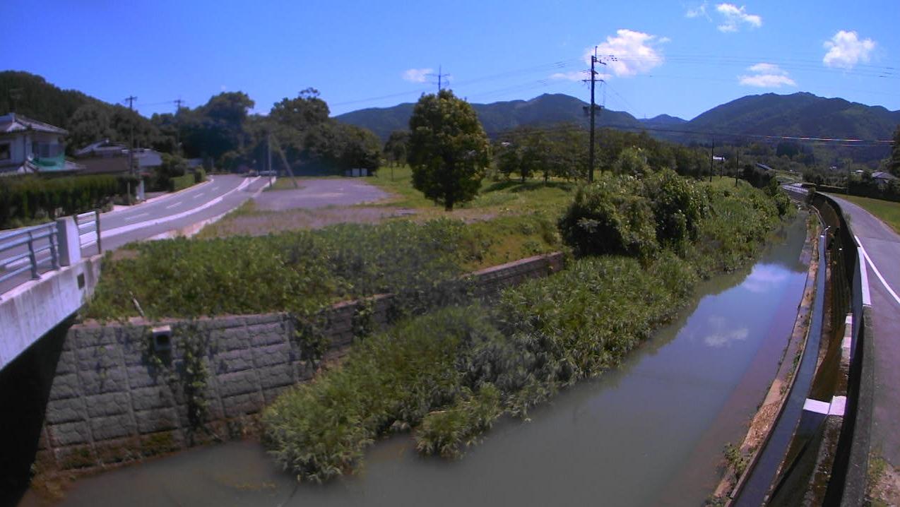 竜野川岩淵橋ライブカメラ(熊本県甲佐町上早川)