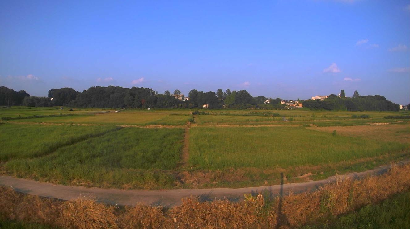 荒川60.8KP左岸ライブカメラ(埼玉県鴻巣市滝馬室)