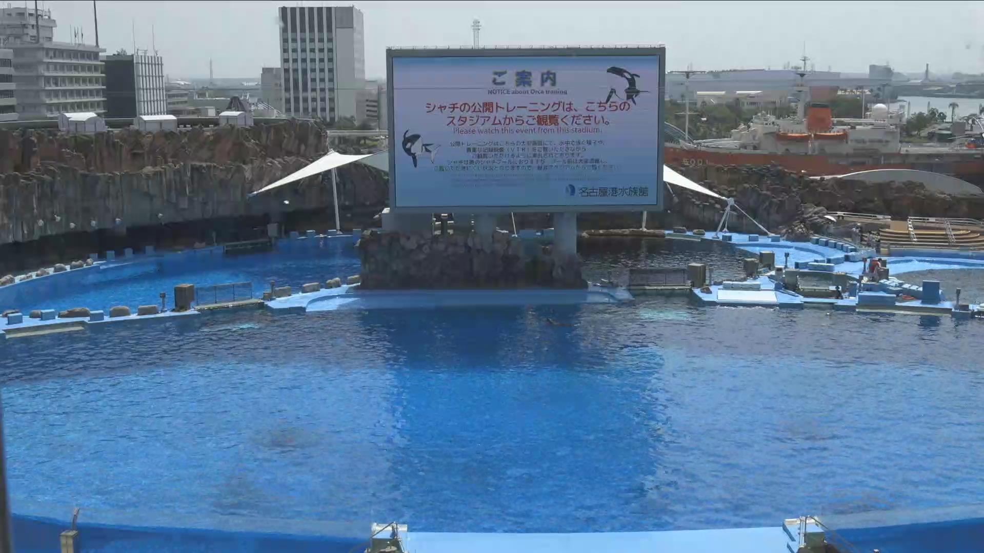 名古屋港水族館メインプールライブカメラ(愛知県名古屋市港区)