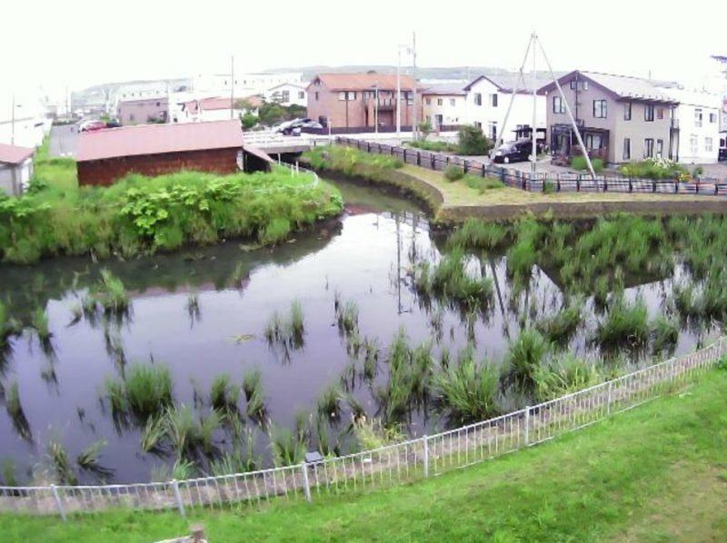 古川0.7KPライブカメラ(北海道新ひだか町静内古川町)