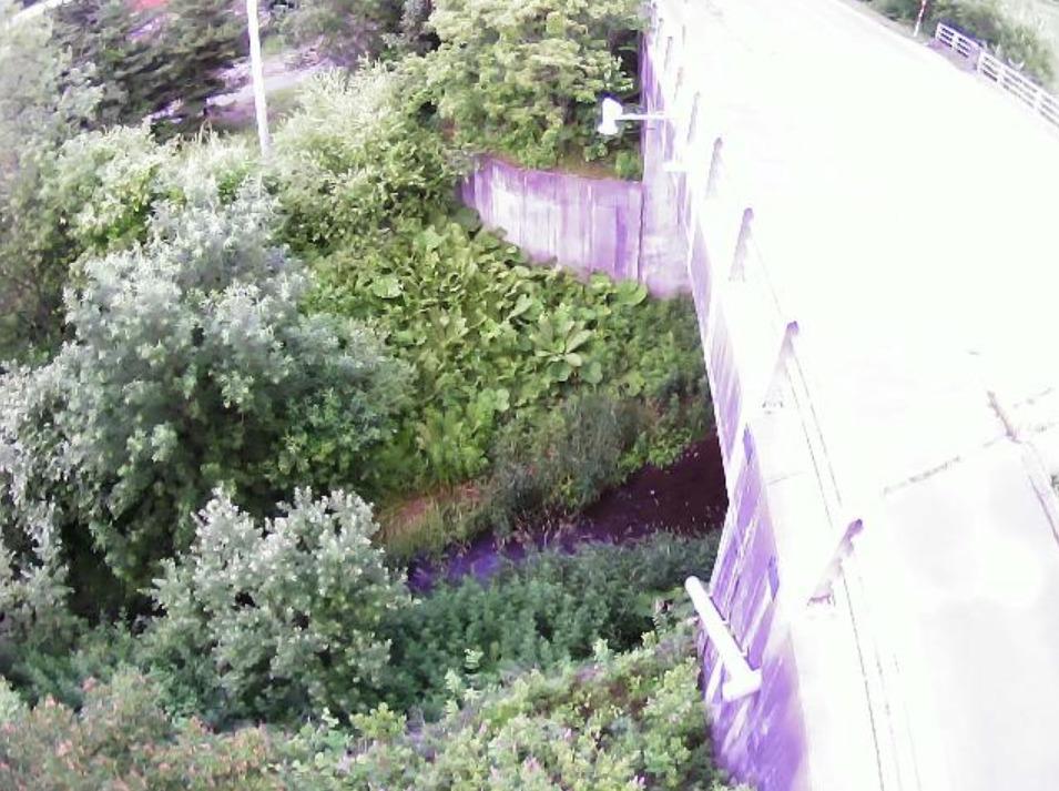 古舞川4.0KPライブカメラ(北海道幕別町古舞)