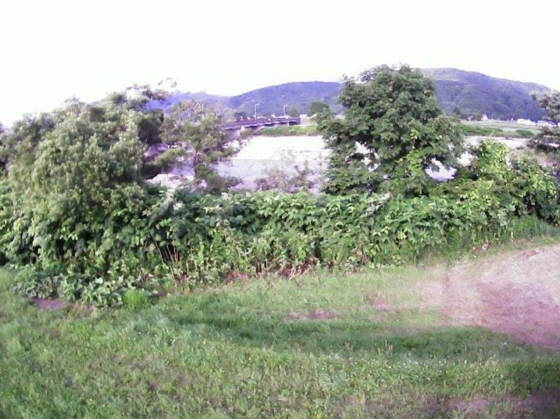日高幌別川上杵臼ライブカメラ(北海道浦河町西舎)