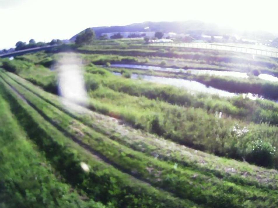 向別川1.5KPライブカメラ(北海道浦河町緑町)