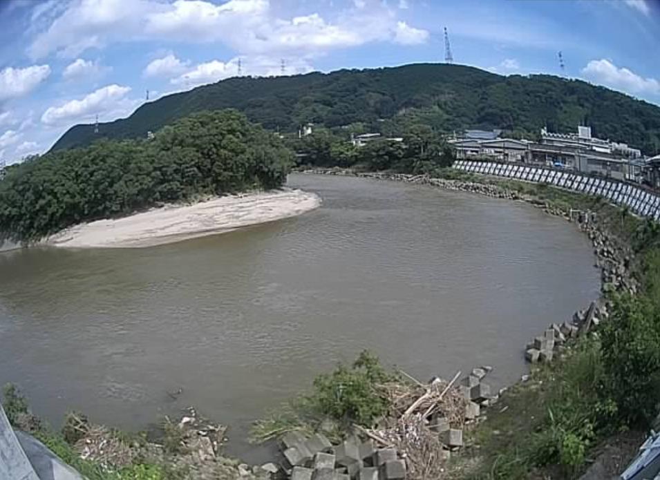 大和川国分市場ライブカメラ(大阪府柏原市国分市場)