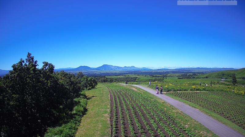 ヒゴタイ公園阿蘇雲海ライブカメラ(熊本県産山村田尻)