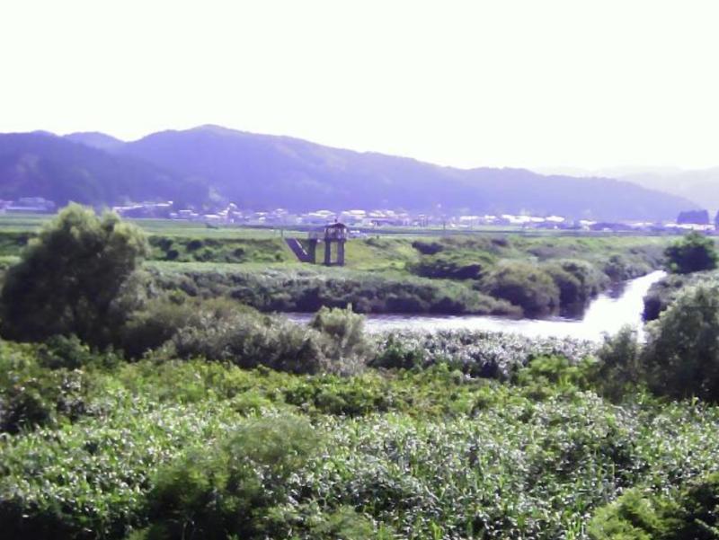 子吉川13.2KP右岸ライブカメラ(秋田県由利本荘市鮎瀬)