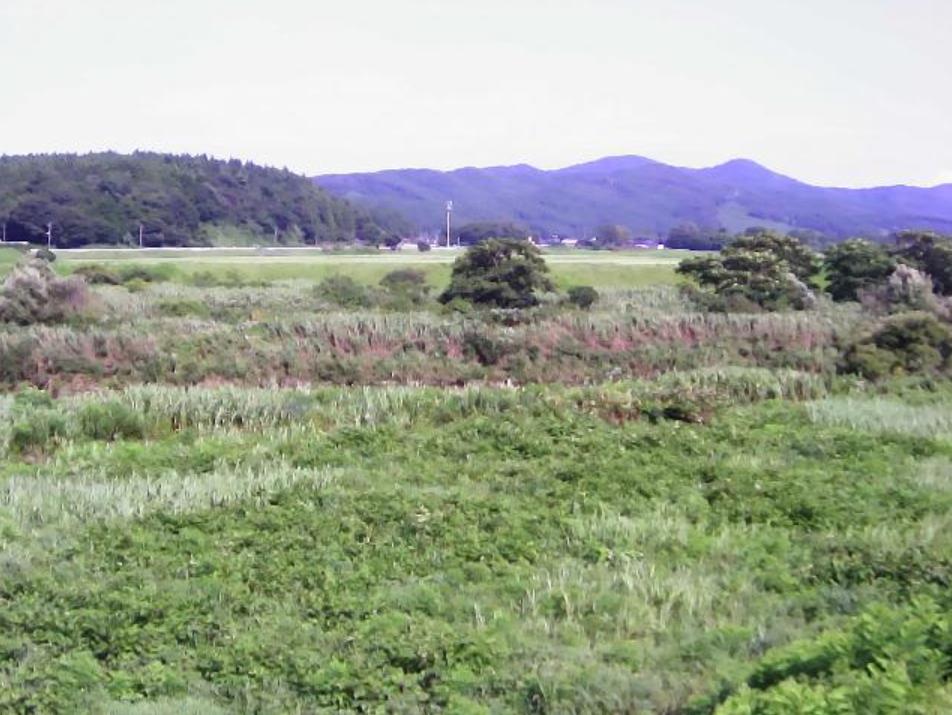 子吉川13.4KP左岸ライブカメラ(秋田県由利本荘市黒沢)