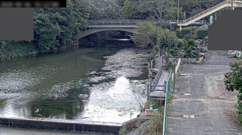 都幾川玉川橋観測局ライブカメラ(埼玉県ときがわ町玉川)