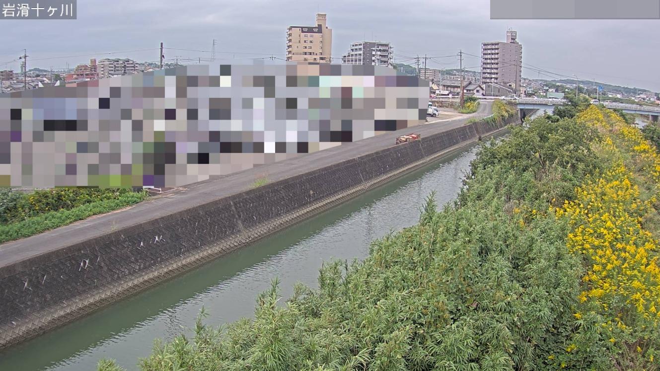 十ヶ川岩滑ライブカメラ(愛知県半田市岩滑東町)