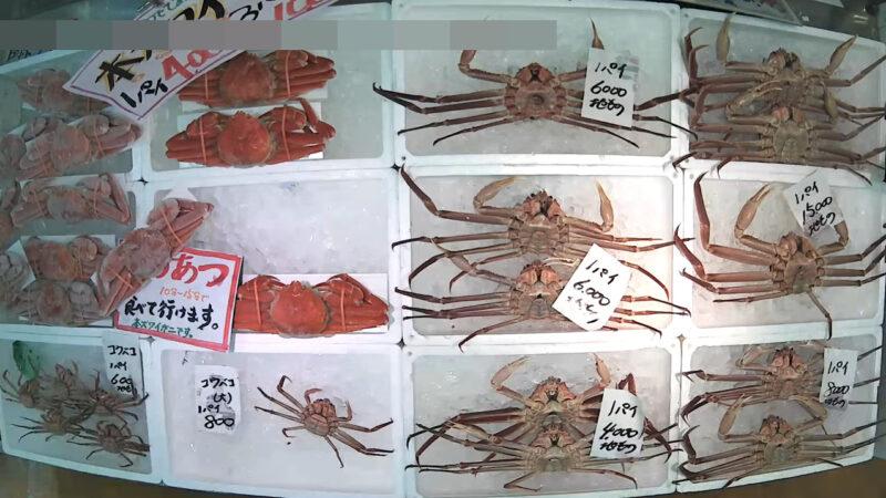 磯貝鮮魚店第2ライブカメラ(新潟県糸魚川市能生小泊)