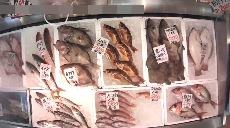 磯貝鮮魚店第4ライブカメラ(新潟県糸魚川市能生小泊)