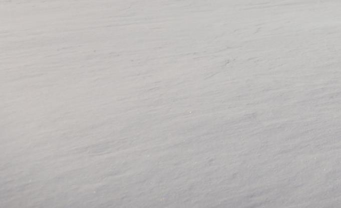 雪堆積場ライブカメラ一覧