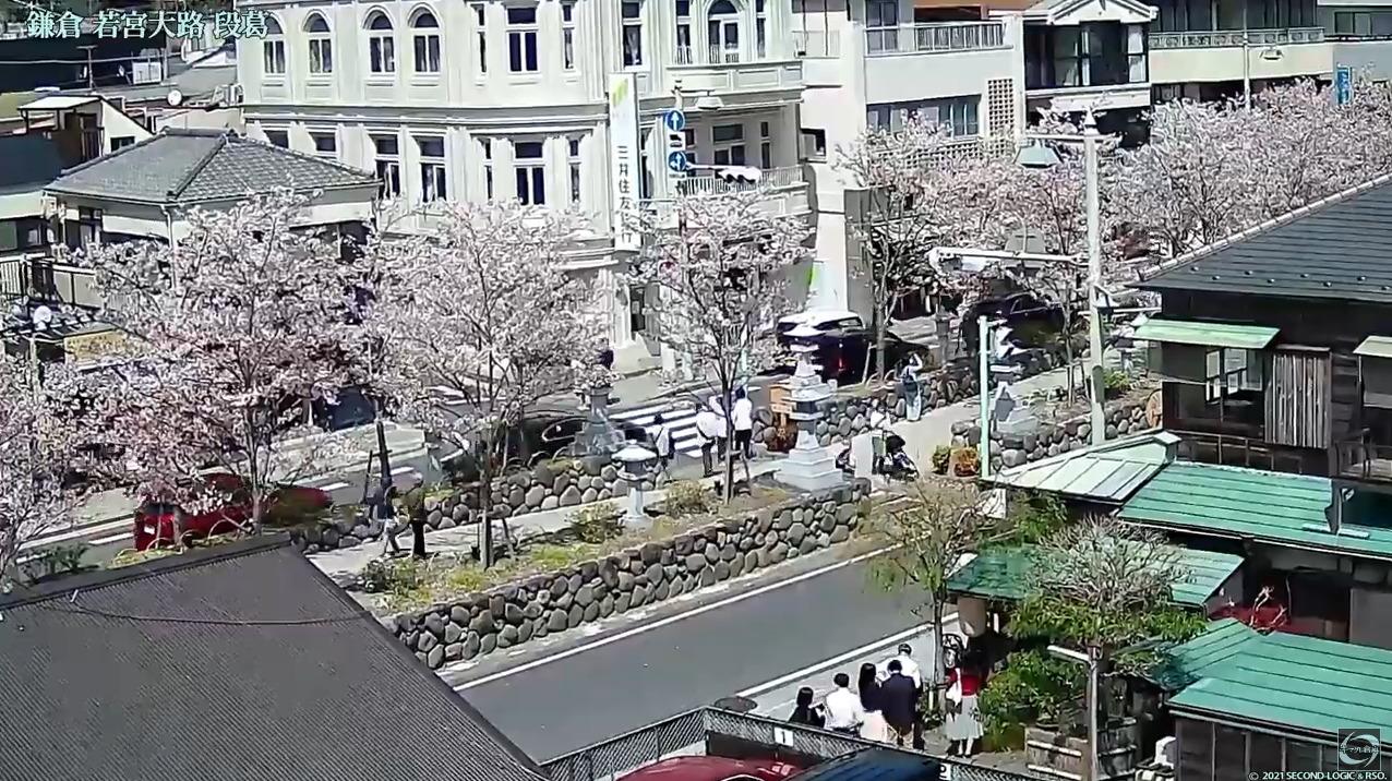 鎌倉若宮大路段葛ライブカメラ(神奈川県鎌倉市小町)