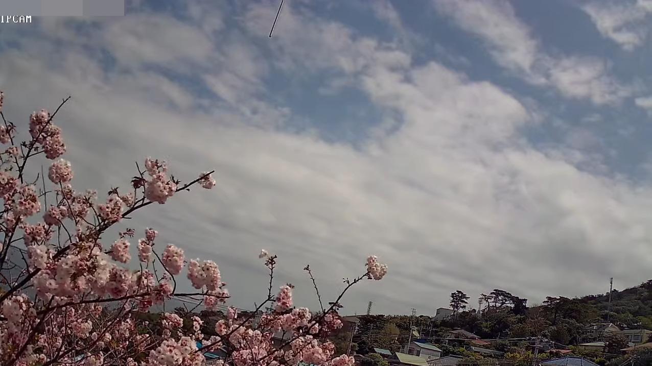 利島村ライブカメラ(東京都利島村)