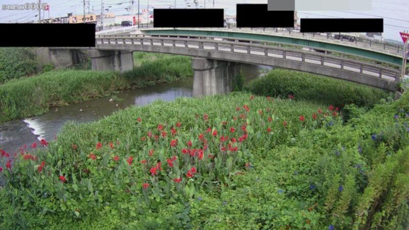 三原川円行寺ライブカメラ(兵庫県南あわじ市八木寺内)