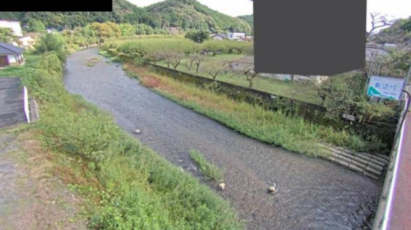 越辺川梅園橋観測局ライブカメラ(埼玉県越生町堂山)